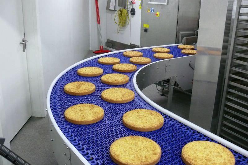 Băng tải thực phẩm